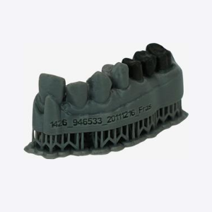 LC-Dental-Dental-Model-Top