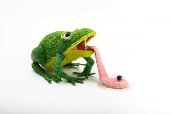 3D Simo frog
